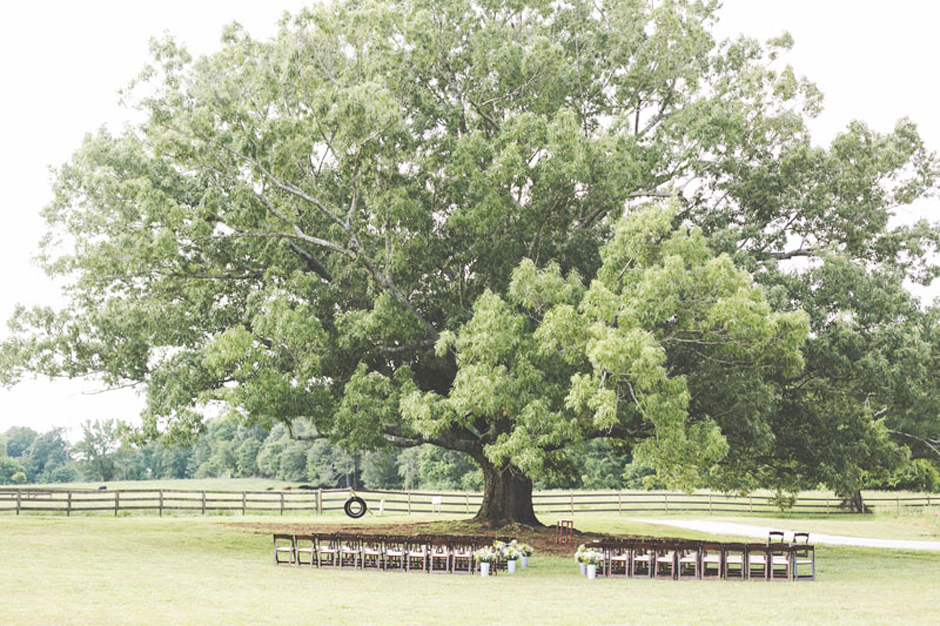 Wedding ceremony under a large oak tree