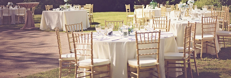 gold wedding chair rentals