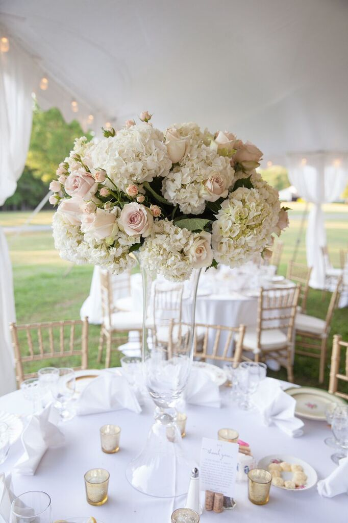 Oconee Events Gold Chair Rentals-- Wedding Athens, GA