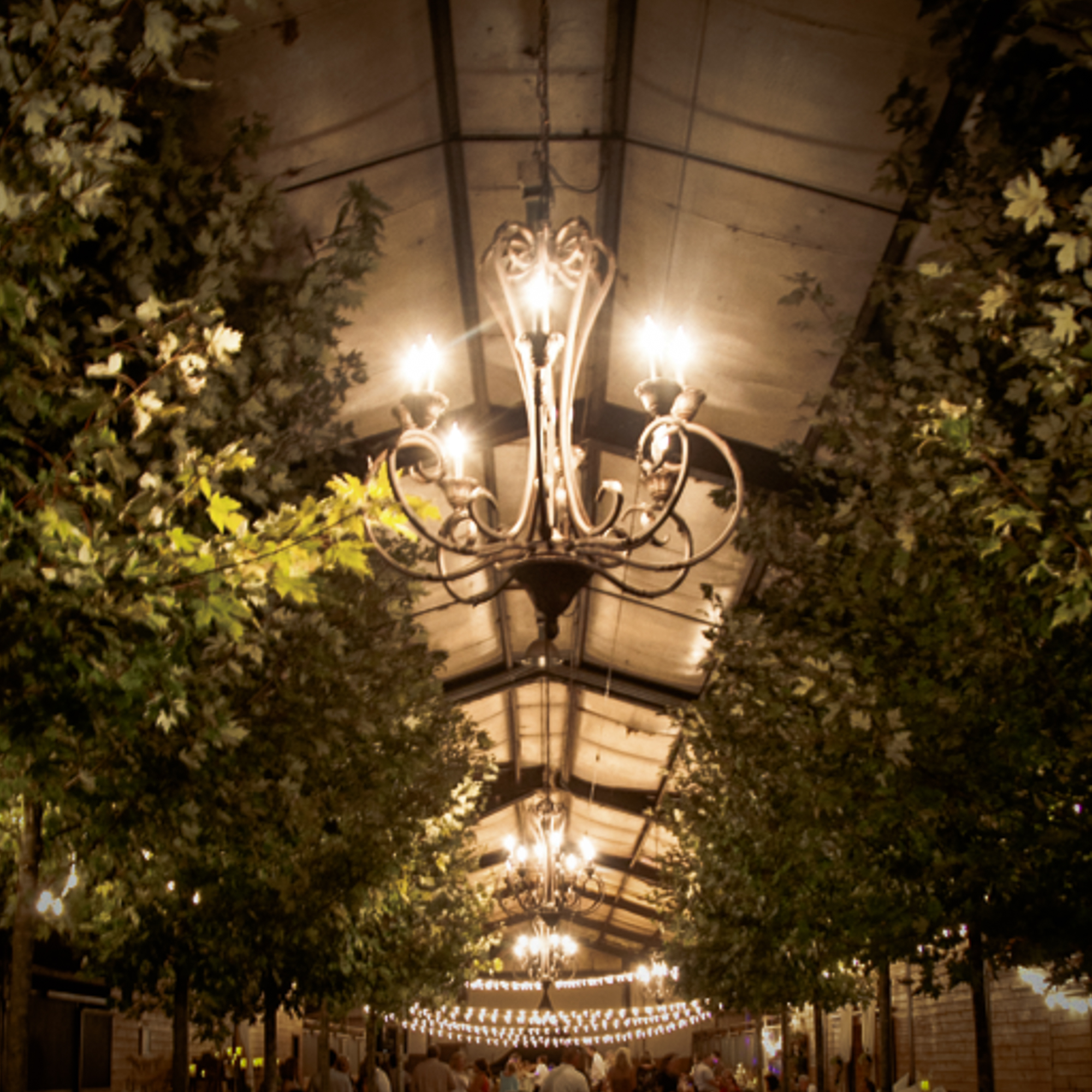 LIGHTING RENTAL by Oconee Events Chandeliers String Lights