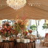 Frame Tent with Gold Liner | Oconee Events