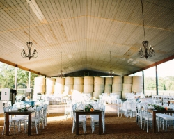 Oconee Events Reception table, chair, light rentals-- Wedding Athens, GA