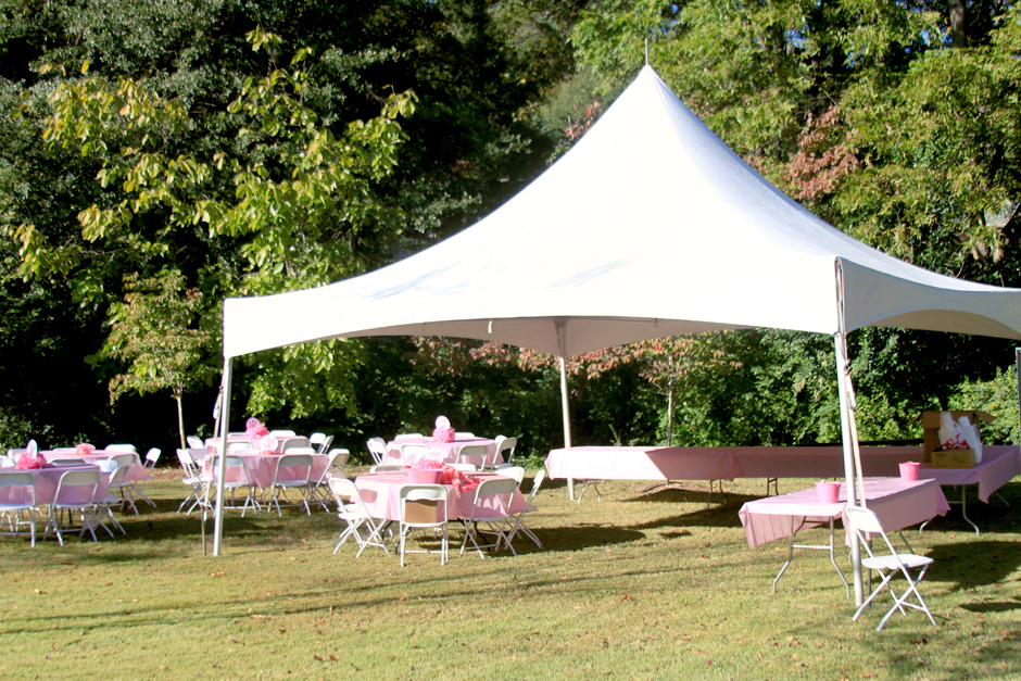 Oconee Events - Table and Chair Rental in Athens, GA - Loran Smith Center for Cancer Support Fundraiser