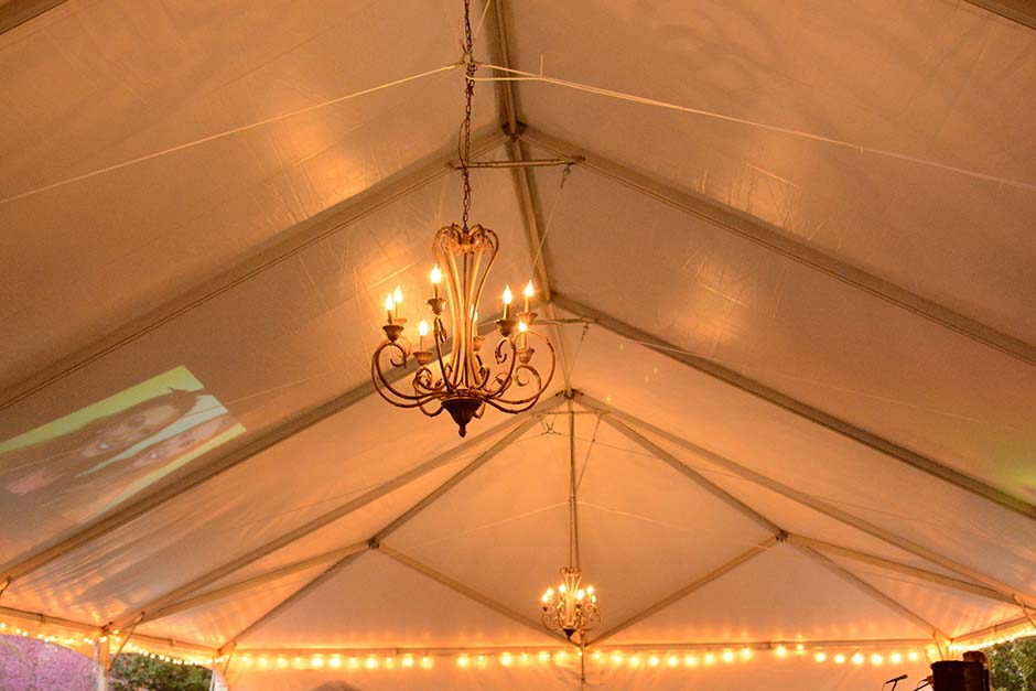 large-party-tent