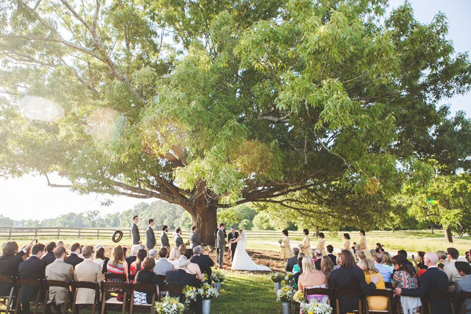 Oconee Events dark fruitwood folding chair rentals